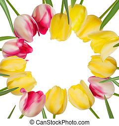 fiore, copyspace., eps, tulipano, fondo, 8