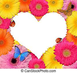 fiore, cuore, isolato
