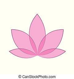 fiore dentellare, loto, isolato, fondo, bianco