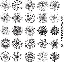 fiore, disegnato, set, mano