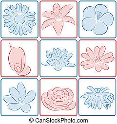 fiore, disegno, elements.