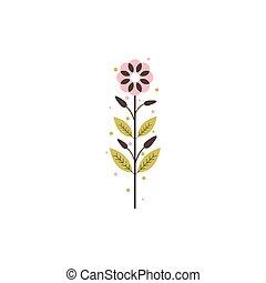 fiore, fioraio, botanico