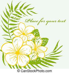 fiore, fondo, tropicale