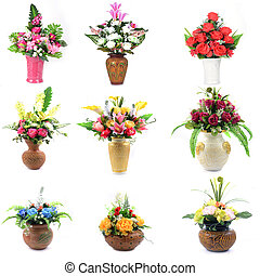 fiore, isolato, collezione