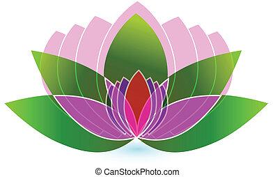 fiore loto, icona, logotipo, vettore