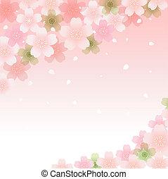 fiore, primavera, fondo, ciliegia