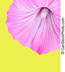 fiore primaverile, fondo, disegno
