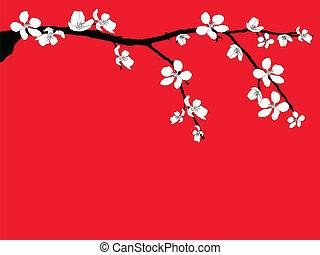 fiore, ramo, ciliegia, bello