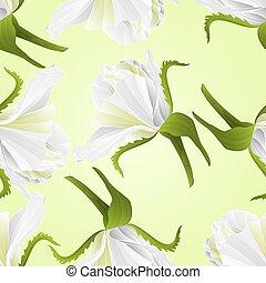 fiore, rosa, seamless, struttura, vector.eps, bianco, germoglio