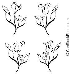 fiore, set, isolato, illustrazione, vettore, fondo, silhouette, bianco