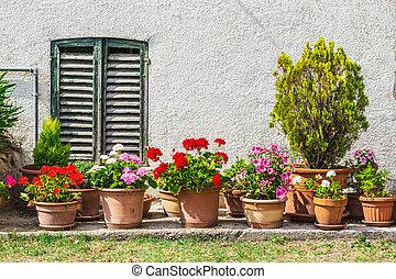 fiore, vecchio, windows, casa, porte, decorato