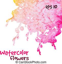 fiori, acquarello, rosa
