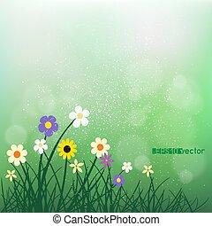fiori, bokeh, verde, offuscamento, erba selvaggia