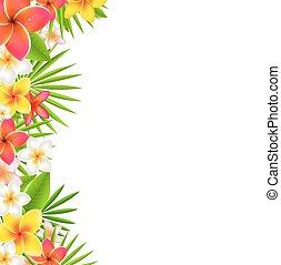 fiori, bordo