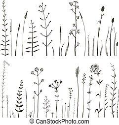 fiori, collezione, campo, sketchy, selvatico, monocromatico, bianco, erba