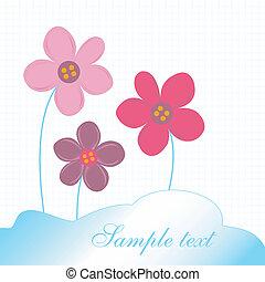 fiori, delicato, scheda