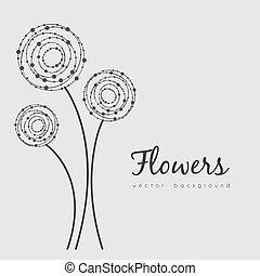 fiori, delicato