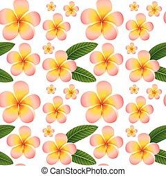 fiori dentellare, seamless, fondo, plumeria