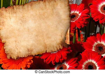 fiori, fondo, retro, lettera, pergamena