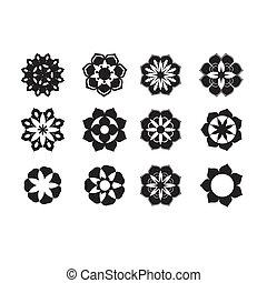 fiori, grafico, set