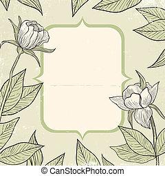 fiori, illustrazione