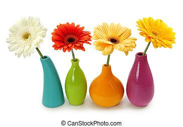 fiori, in, vasi