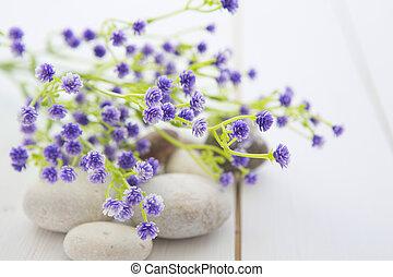 fiori, legno, selvatico, tavola, pietre, terme