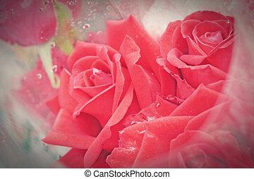 fiori, mazzolino