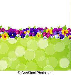 fiori primaverili, bordo