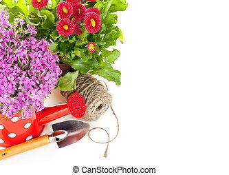 fiori primaverili, con, attrezzi giardino