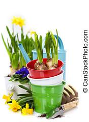 fiori primaverili, e, attrezzi giardino