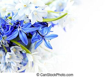 fiori primaverili, fondo