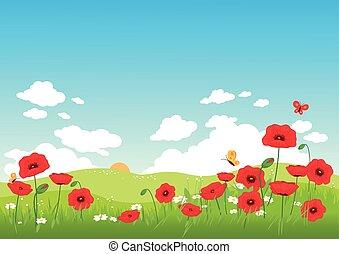 fiori primaverili, fondo, papavero