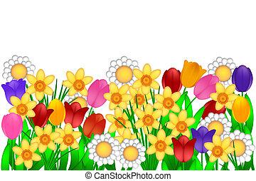 fiori primaverili, illustrazione