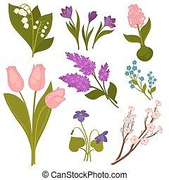 fiori primaverili, realistico, collezione, su, white.