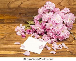 fiori primaverili, sakura, scheda