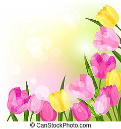 fiori primaverili, tulips, naturale, fondo.