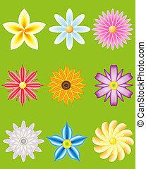 fiori, progetto serie, icona