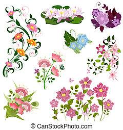 fiori, set