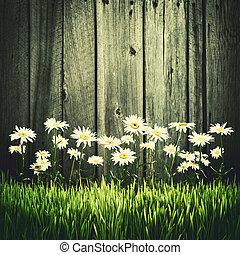 fiori, su, uno, recinto