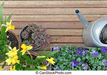 fiori, terrazzo, primavera