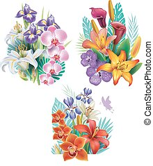 fiori tropicali, disposizioni