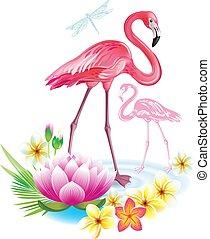 fiori tropicali, flamingoes, disposizione