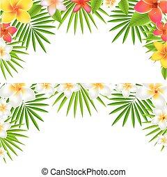 fiori tropicali, set, bordo