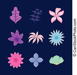 fiori tropicali, set, mette foglie
