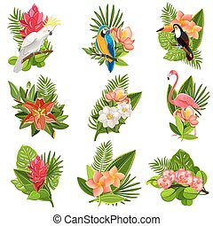 fiori tropicali, set, uccelli, pictograms
