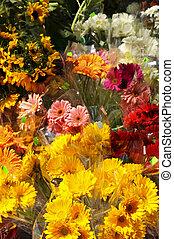 fiori, vendita