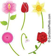 fiori, vettore, set