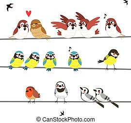 fios, pássaro