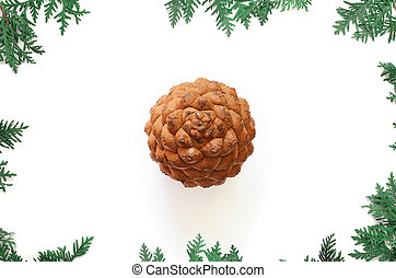 Fir branch on old wooden shabby background with big cone. Christmas.